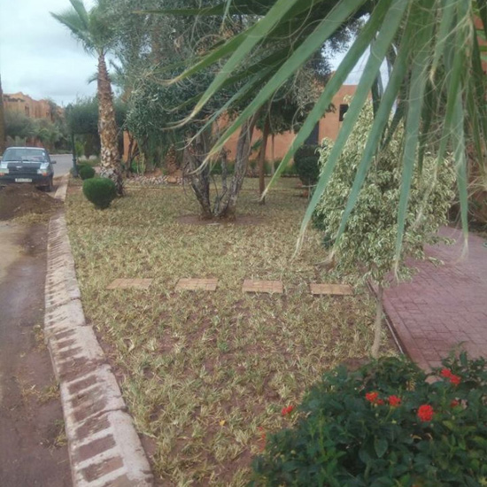 Redevelopment of the green space of a villa in Marrakech