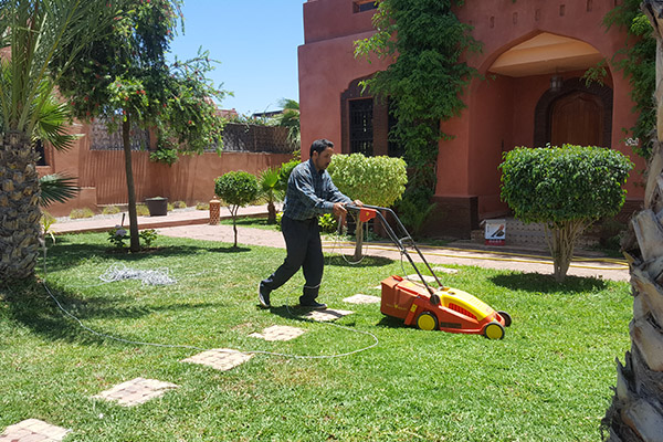 Garden maintenance in Marrakech and everywhere in Morocco