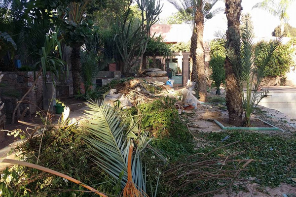 Clearing and weeding in Marrakech Morocco.