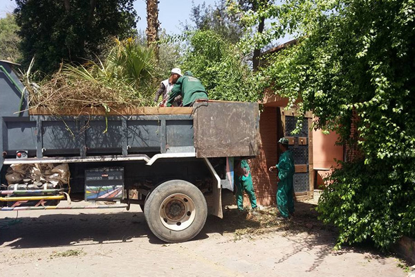 Green waste removal in Marrakech Morocco